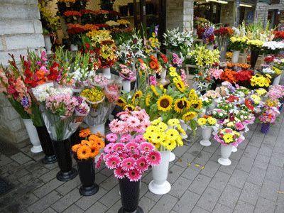 магазин за цветя Русе